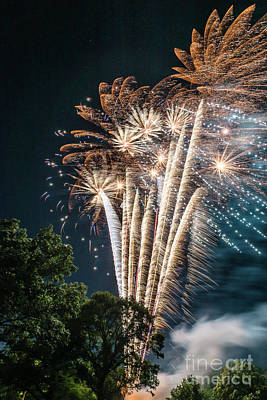 Photograph - Palm Tree Fireworks by Joann Long