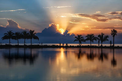 Photograph - Palm Tree Framed Sunrise by Andres Leon