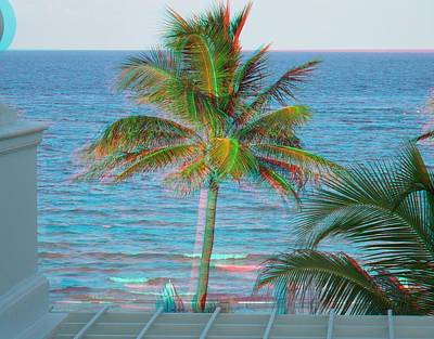 Photograph - Palm Tree In 3d by Ron Davidson
