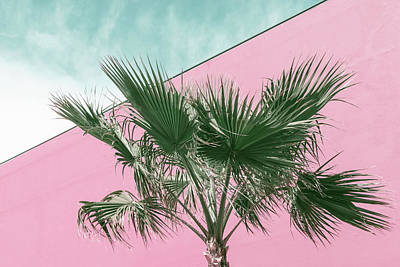 Photograph - Palm Tree In Millennial Pink And Mint Greens by Georgia Mizuleva