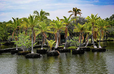 Art Print featuring the photograph Palm Tree Islands by Pamela Walton