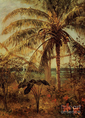 Frond Painting - Palm Tree, Nassau, 1892  by Albert Bierstadt