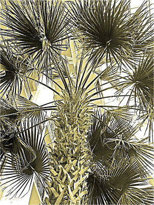 Sepia Ink Digital Art - Palm Tree Pen And Ink Grayscale With Sepia Tones by Marian Bell