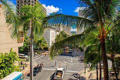 Photograph - Palm Tree Steet View by Michael Scott
