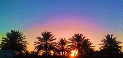Photograph - Palm Tree Sunset by Deborah Lacoste