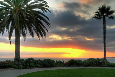 Photograph - Palm Tree Sunset by Eddie Yerkish