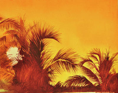 Wall Art - Painting - Palm Tree Sunset by Terry Arroyo Mulrooney