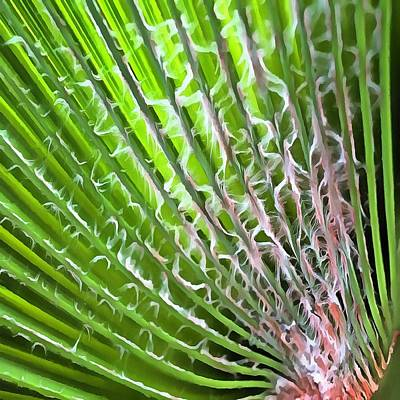Painting - Palm Tree Tropical Leaf by Tracey Harrington-Simpson