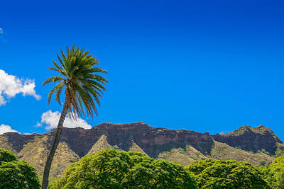 Photograph - Palm Tree Volcano  by Michael Scott