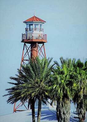 Photograph - Palm Trees And A Lighthouse by D Hackett