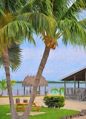 Photograph - Palm Trees And Chickees In The Florida Keys by Ginger Wakem