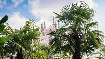 Photograph - Palm Trees And Duomo Cathedral, Milan - Italy by Alexandre Rotenberg