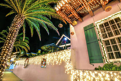 Photograph - Palm Trees And Ornaments by Stacey Sather