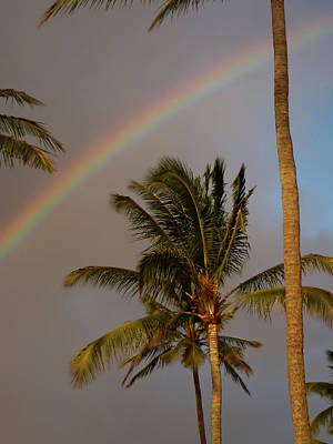 Photograph - Palm Trees And Rainbow by Roger Mullenhour