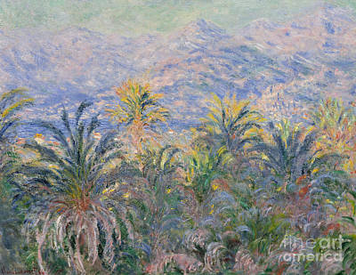 Italian Mediterranean Art Painting - Palm Trees At Bordighera, 1884  by Claude Monet