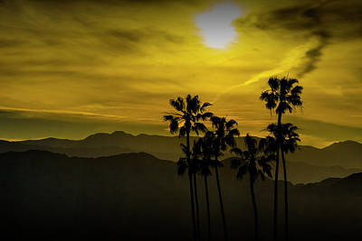 Art Print featuring the photograph Palm Trees At Sunset With Mountains In California by Randall Nyhof