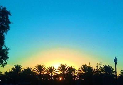 Photograph - Blue Sunset New Orleans City Park by Deborah Lacoste