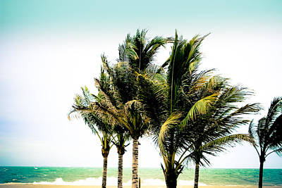Photograph - Palm Trees Ocean Breeze by Colleen Kammerer
