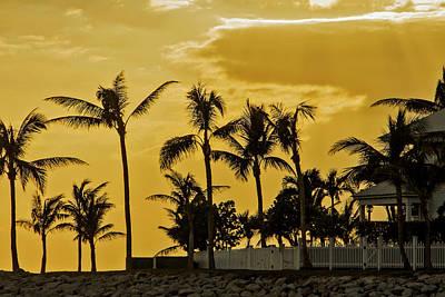 Photograph - Palm Trees On Sunset Key At Sunset by Bob Slitzan