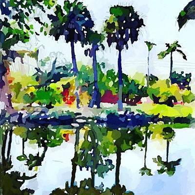 Photograph - Palm Trees Reflected In Merritt Island by Melissa Abbott