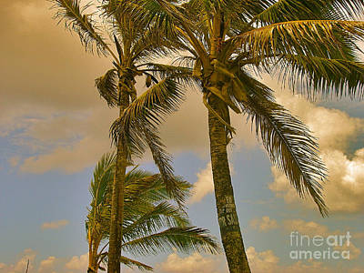 Palm Trees Art Print by Silvie Kendall