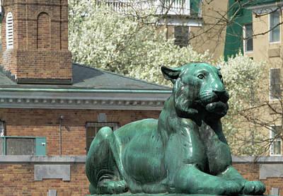 Photograph - Palmer Square Princeton by Steven Richman