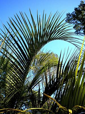 Art Print featuring the painting Palmetto 2 by Renate Nadi Wesley