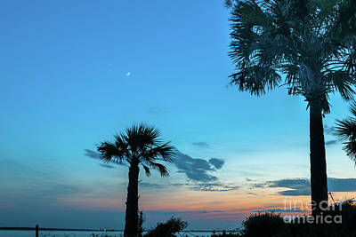 Photograph - Palmetto Moon Sunset Over Sullivan's Island South Carolina  by Dale Powell