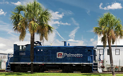 Science Collection Rights Managed Images - Palmetto Railways Royalty-Free Image by Dale Powell