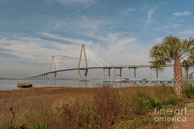Photograph - Palmetto State Fog by Dale Powell
