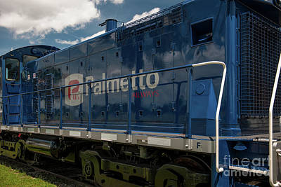 Photograph - Palmetto Train And Sky by Dale Powell