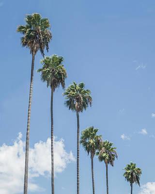 Photograph - Palmifornia by Jakob Dahlin