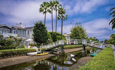 Photograph - Palms And Egrets At The Venice Canals by Lynn Bauer