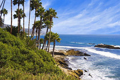 Photograph - Palms And Seashore Laguna Beach California Coast by Utah Images