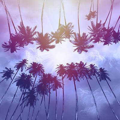 Royalty-Free and Rights-Managed Images - Palms And Sunset 2 by Bekim M