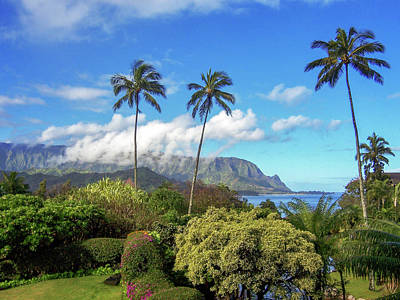 Photograph - Palms At Hanalei by James Eddy