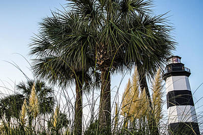 Photograph - Palms At Lightkeepers by David Smith