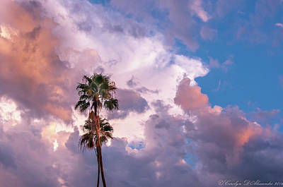 Palms At Sunset Art Print by Carolyn Dalessandro