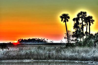 Photograph - Palms At Sunset by Richard Zentner