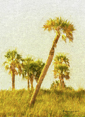 Palms On Canvas Art Print