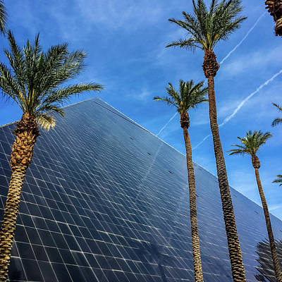 Photograph - Palms Surround The Luxor - Las Vegas, Nevada by Debra Martz