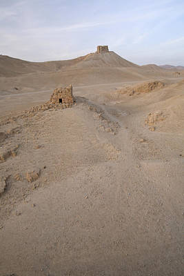 Photograph - Palmyra Desert by Marcus Best