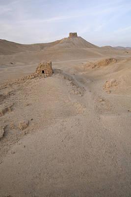 Photograph - Palmyra Desert by Marcus Best