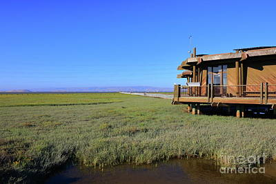 Train Photography - Palo Alto Baylands 2 by Leia Hewitt