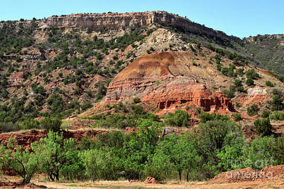 Palo Duro Canyon In Texas Art Print by Louise Heusinkveld