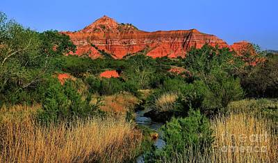 Photograph - Palo Duro Canyon River by Diana Mary Sharpton