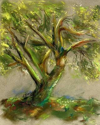 Painting - Palo Verde by Marilyn Barton