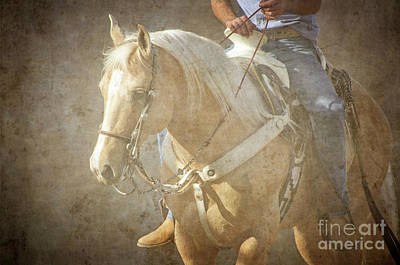 Photograph - Palomino Cow Horse by Jim And Emily Bush