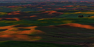 Photograph - Palouse 7 by Thomas Hall
