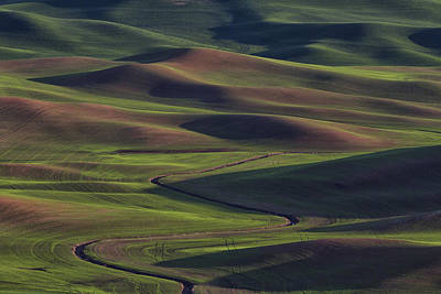 Back Road Photograph - Palouse Abstract 1 by Mark Kiver